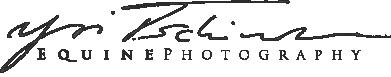 Yvi Tschischka Photography